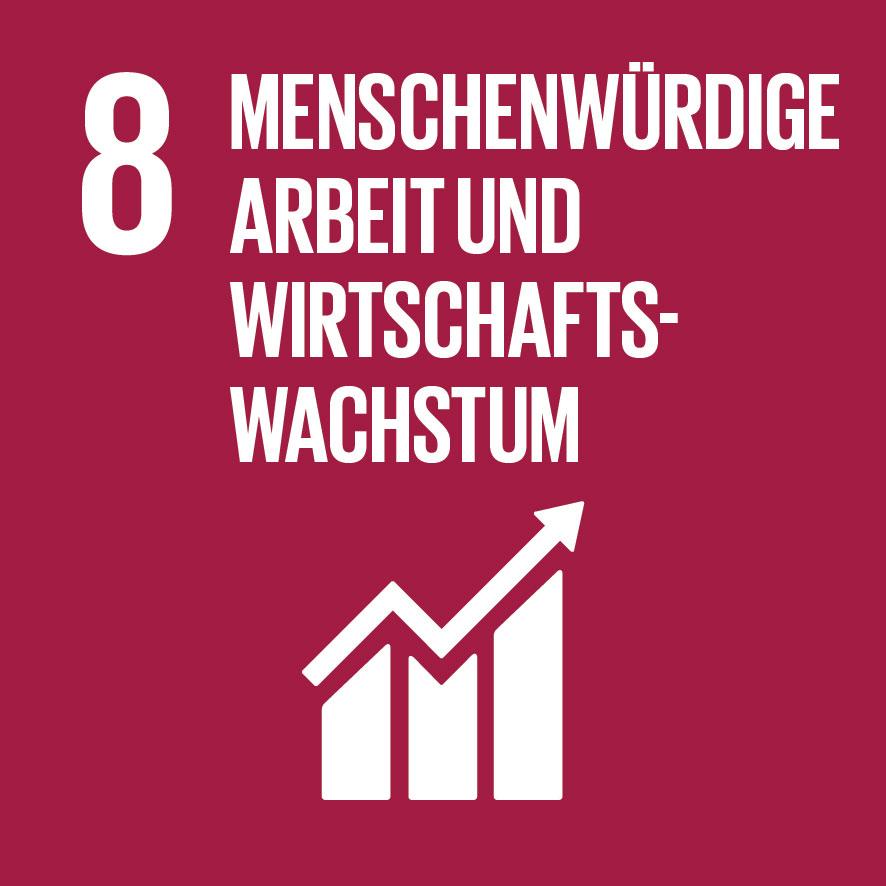 SDG 8 Menschenwürdige Arbeit