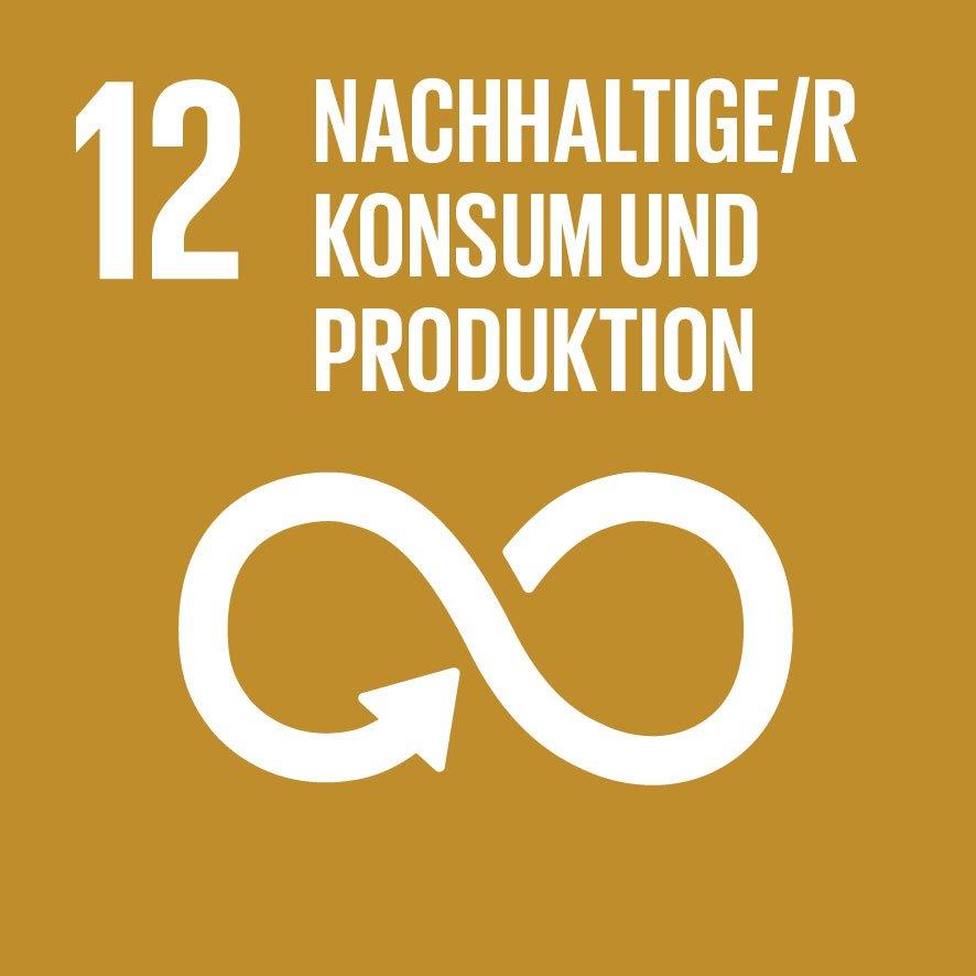 SDG 12 Nachhaltiger Konsum
