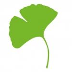Profilbild von mehr grün